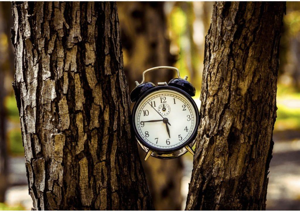 intermittent fasting clock