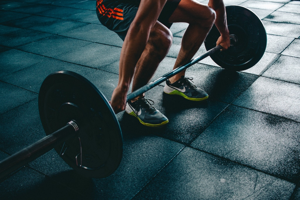 7 Fitness Tips To Build Muscles And Lose Fat Newairz