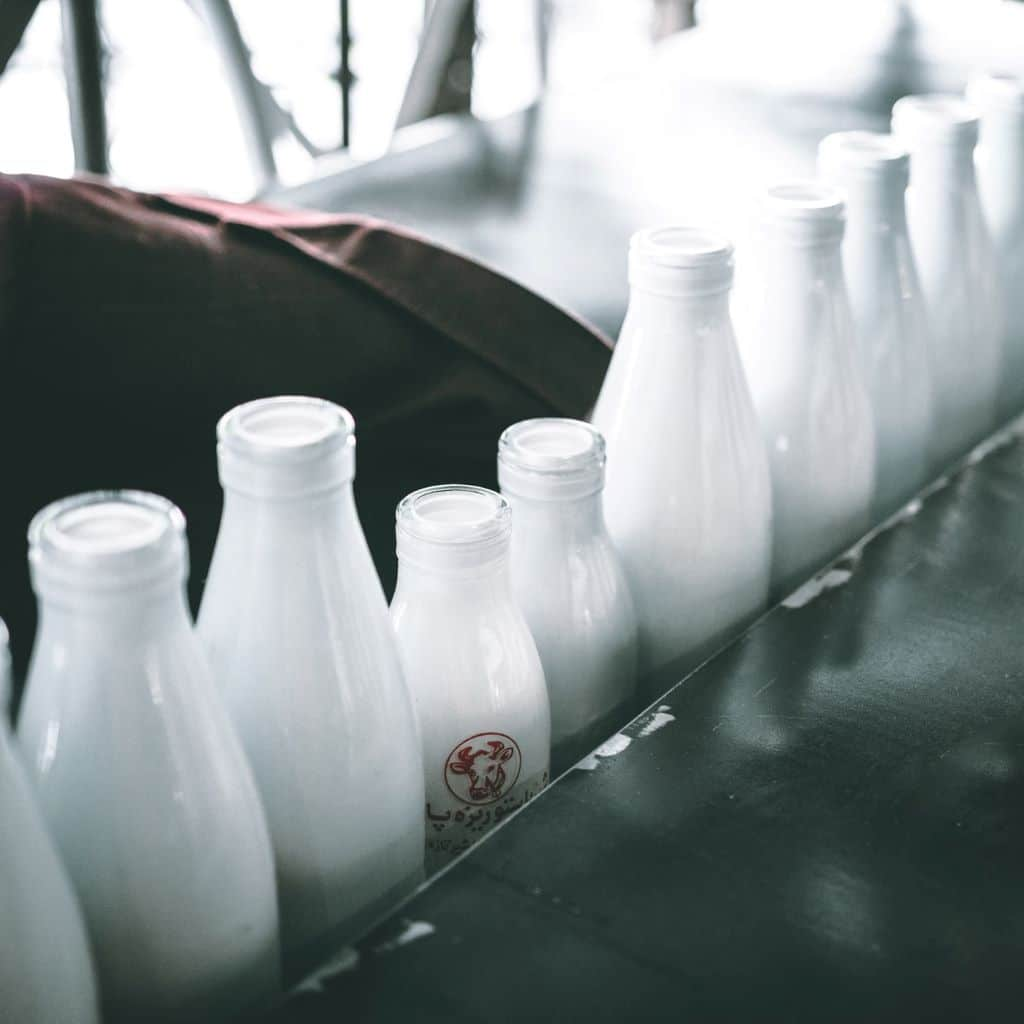 Healthy fight 101: Plant Milk vs Animal Milk what is animal milk ?